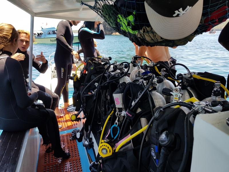 scuba-diving-courses