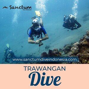 trawangan-dive