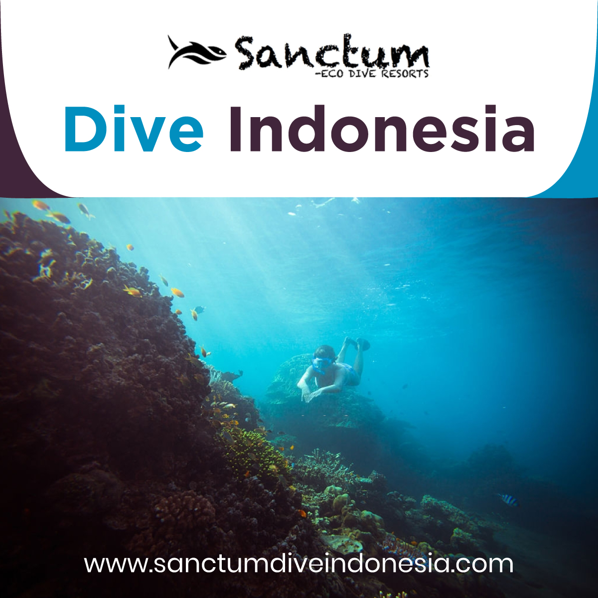 dive-Indonesia